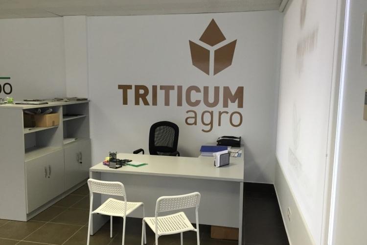 Triticum Oficinas