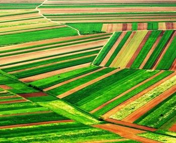 Proyectos Agrícolas