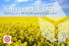 Triticum-Agro campaña de siembra de Colza